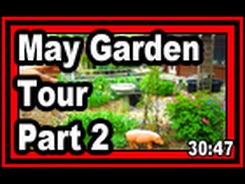 May Garden Tour Part 2 - Wisconsin Garden Video Blog 684