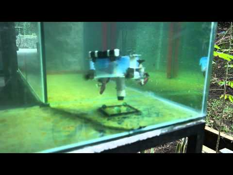 Skullers Boro - RC Underwater Robot - SRG 2015 (After day competition)