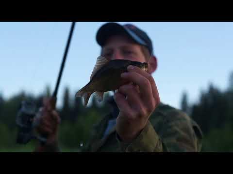 Рыбалка в Кушве - летние флешбэки