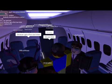 Roblox Airline Review: DAL - Delta Air Line