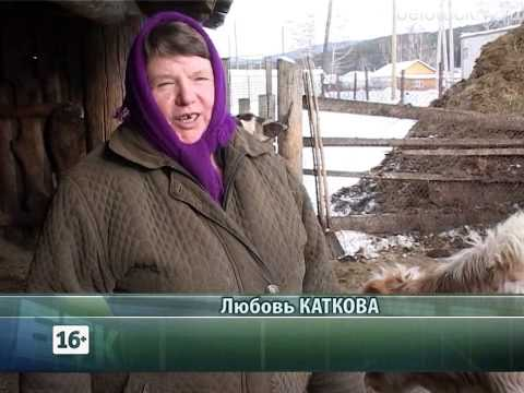 работа в белорецке водителем