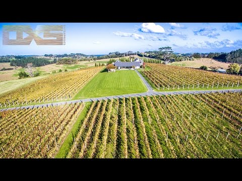 Matakana Wine Trail Vineyards - A Drones Perspective 4K