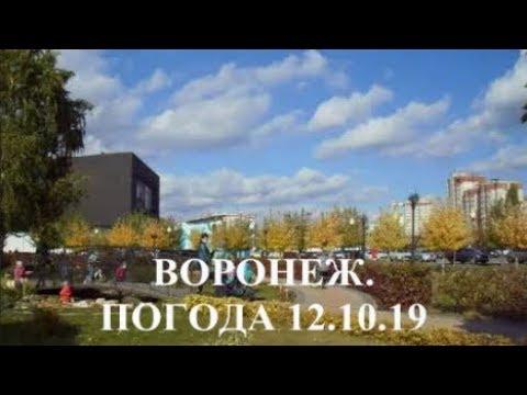 Воронеж. Прекрасная  погода 12 октября 2019
