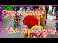 The wedding day cah vixion jarijari (story wa paling hits)