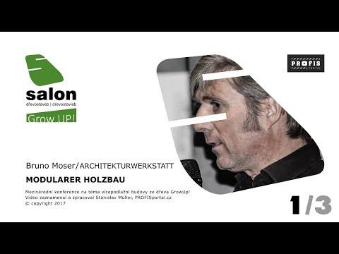 Modulární dřevostavby - Modularer Holzbau - 1/3