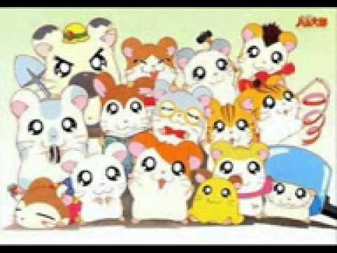 Hamster anime show