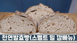천연발효빵의 모든 것⭐…