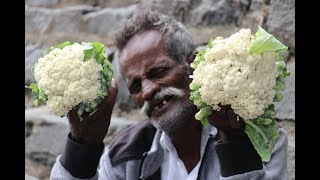 Cauliflower Chilly / Village food factory