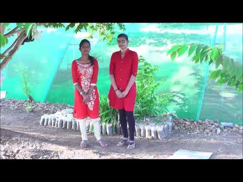 College of Horticulture, bagalkot Fresher's party 2k18