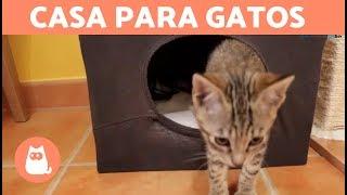 Casa para gatos casera con una camiseta - DIY