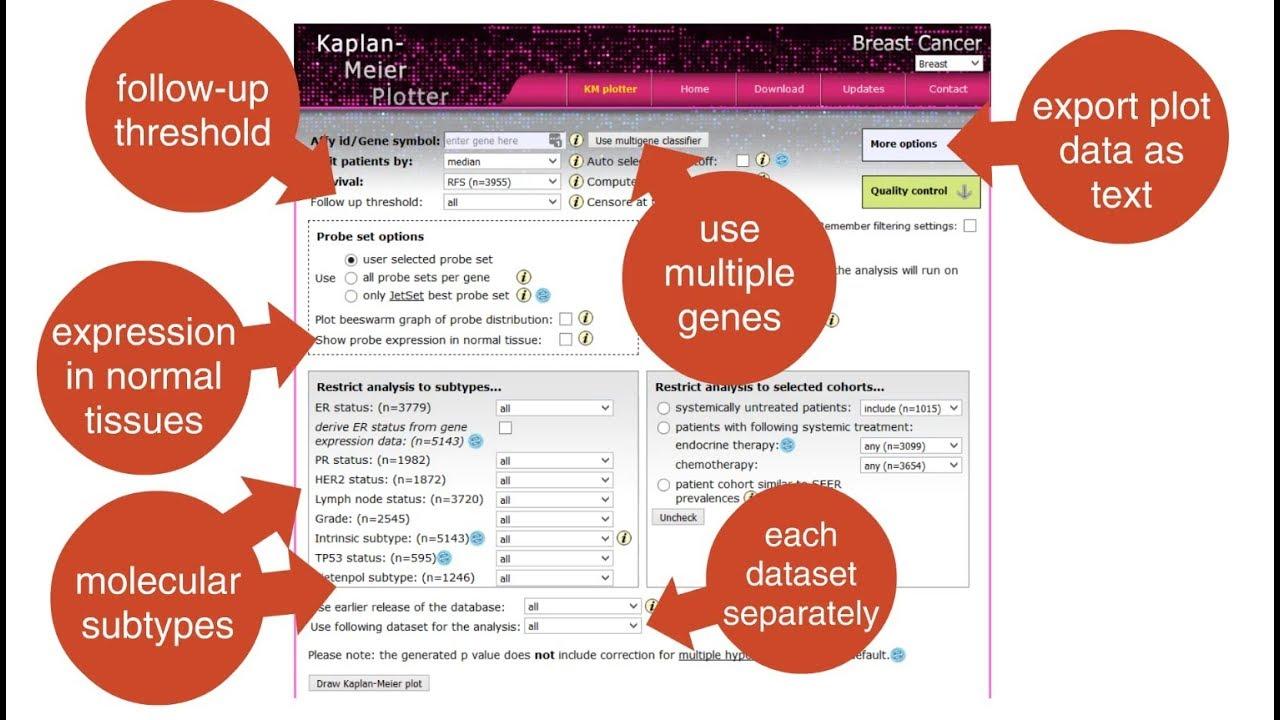 Kaplan Meier-plotter [Breast Cancer]