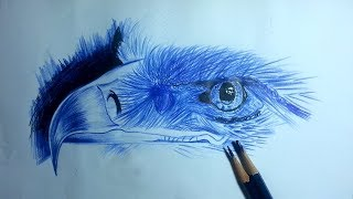 How to Draw color pencil an 3D Eagle Head/Farabi Drawing Academy