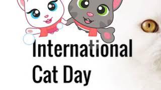 International Cat Day????