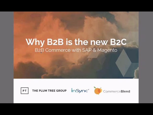 Webinar on B2B eCommerce through Magento - InSync Tech-Fin Solutions