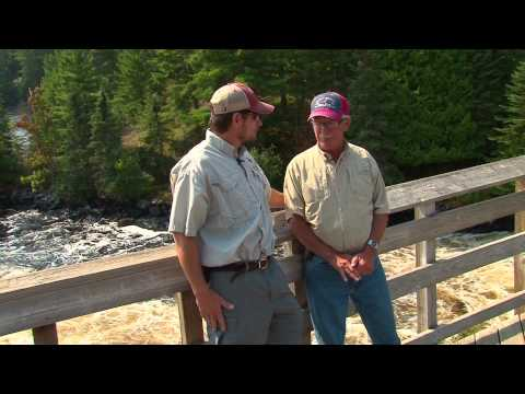 Midwest Outdoors TV Show #1518 Intro & Rainy Lake - International Falls Adventure