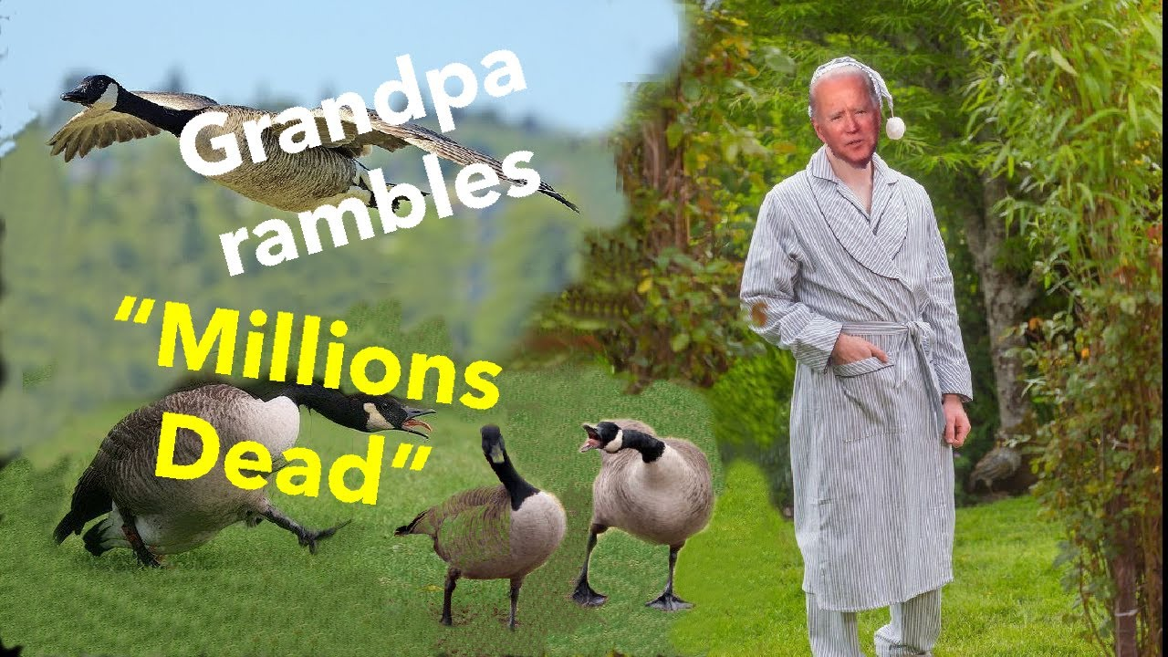Biden (Funny Compilation) 85,000 Jobs, Millions Dead, Geese Honk, Virtual Rally Blooper Disaster