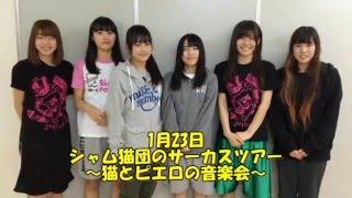 SiAM&POPTUNe通信 Vol.22(シャムポップチューンつうしん) 2016年1月23...