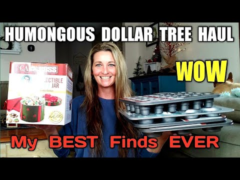 HUMONGOUS DOLLAR TREE HAUL | MY BEST FINDS EVER | SPEECHLESS /I Open Everything