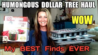HUMONGOUS DOLLAR TREE HAUL | MY BEST FINDS EVER | 😮SPEECHLESS 😮 I Open Everything