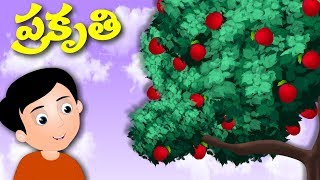 ప్రకృతి | Prakruthi | Telugu Stories | తెలుగు కథలు | Love Nature | Moral Stories For Kids