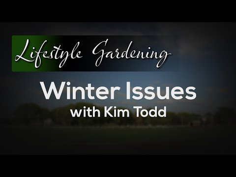 Winter Issues