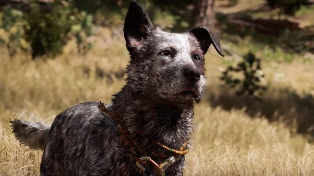 Image result for far cry 5 meet boomer
