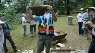 Sam Comfort Inspects a Warre Nuc or Box Style Hive