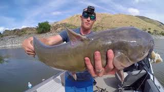 Hunting FAT Snake River CATFISH - Day 3