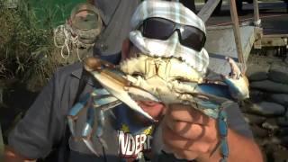 Speedeats - Dover: Pleasanton's Seafood