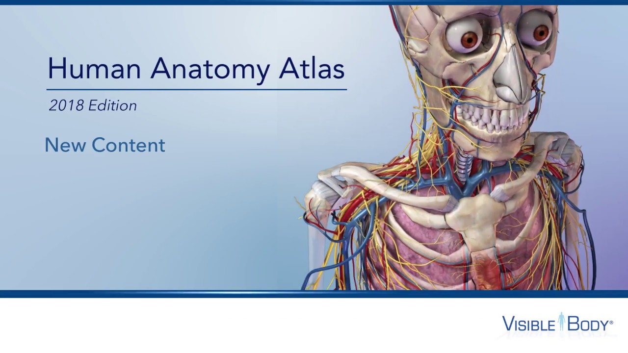 New Content Human Anatomy Atlas 2018 Site License Youtube