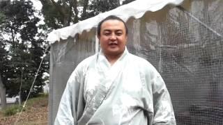 2014年 第2回わんぱく相撲 豊中体験場所 蒼国来関 応援メッセージ.