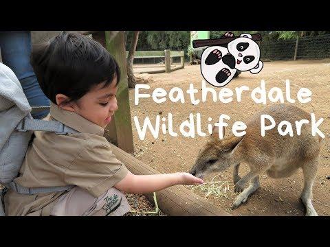 Featherdale Wildlife Park With Mini Zookeper