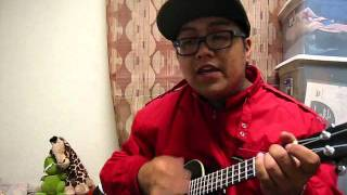 "Sooner Than Later (cover) by Drake ""Ukulele Rendition"""