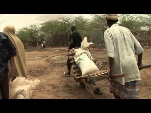 Somalia Executes Al-Shabab Journalist