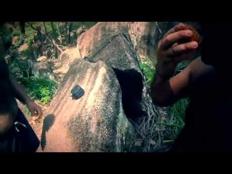 Seychelles Travel Video