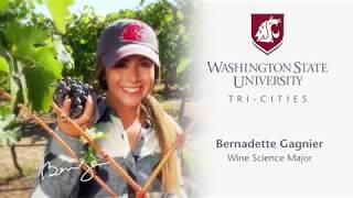 Wine Science at WSU Tri-Cities - Invite Challenge