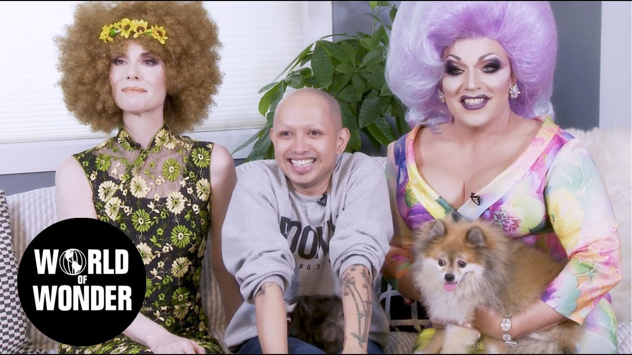 Ongina - Tails of the City: Pets 4 Pets Episode 2
