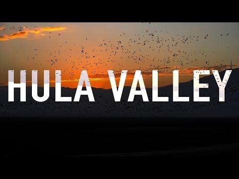 500 Million Birds In Hula Valley. Unbelievable!