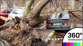 Центральная Россия приходит в себя после сильнейшего шторма