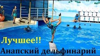 СУПЕР ШОУ. Дельфинарий. АНАПА