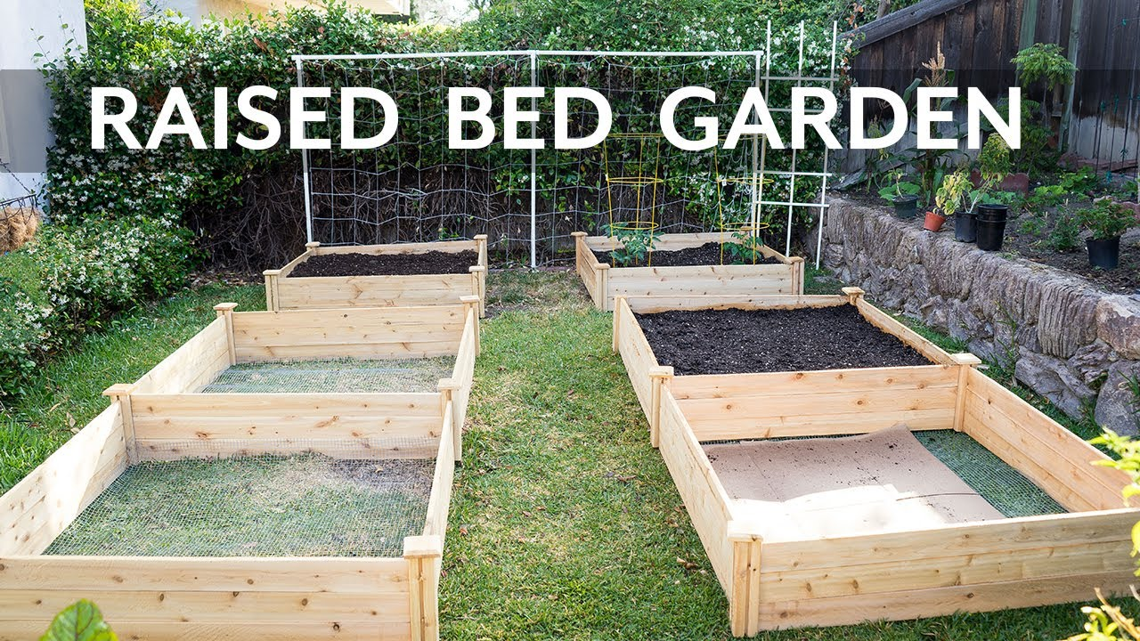 crop make picture raised for bird beds netting how garden cover with bed a of life covers to hinges
