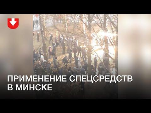 Применение спецсредств на проспекте газеты Правда днем 22 ноября