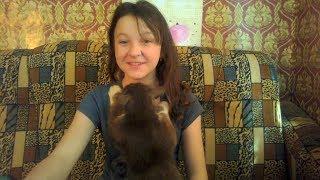 Мой Кот Бася - ласкается :)