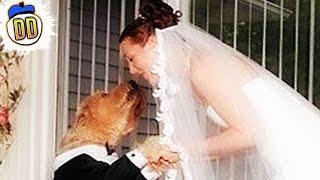 10 Most Bizarre Marriage Rituals Ever