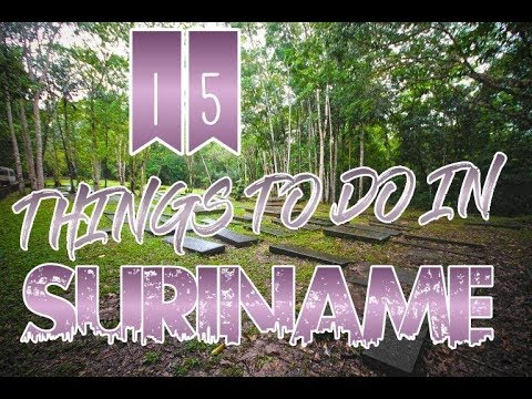 Top 15 Things To Do In Suriname