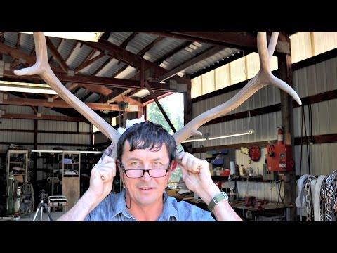 DIY Deer Antler Projects