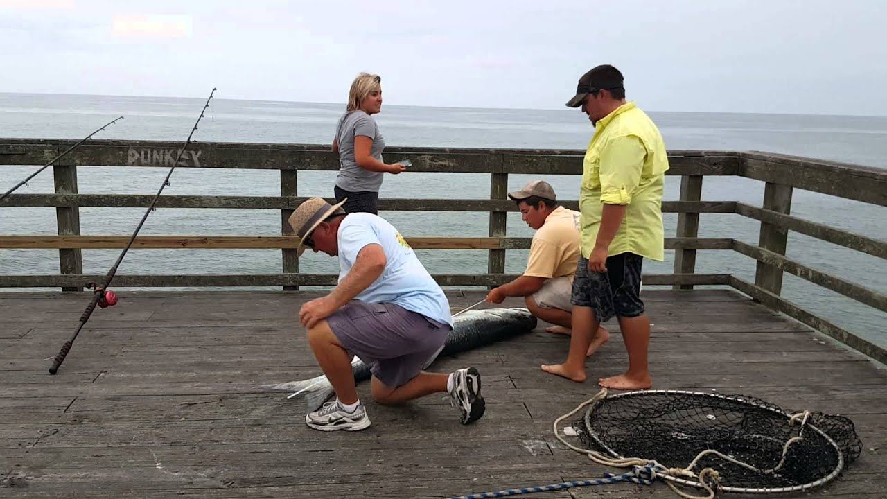 Large fish from jolly roger pier at topsail beach youtube for Seaview fishing pier