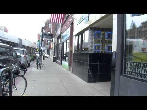 HOODS- The History of Andersonville Chicago