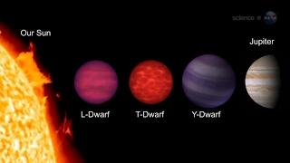 Cool Stars - Y Dwarfs - Stellar Classification - Science at NASA