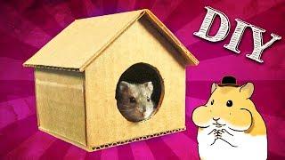 DIY Casinha de Papelão para Hamster - Casinha para Hamster #9